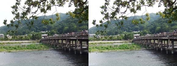 渡月橋⑤(平行法)