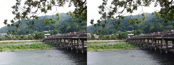 渡月橋⑤(交差法)