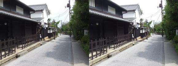 嵯峨鳥居本 重要伝統的建造物郡保存地区④(平行法)