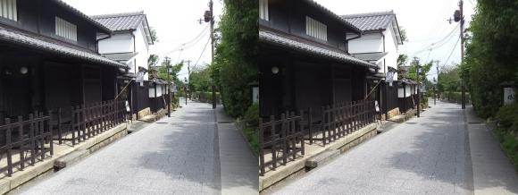 嵯峨鳥居本 重要伝統的建造物郡保存地区④(交差法)