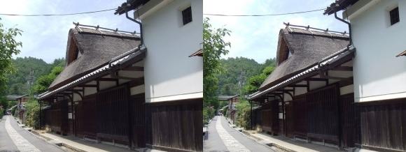 嵯峨鳥居本 重要伝統的建造物郡保存地区③(平行法)
