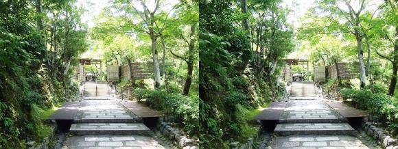 化野念仏寺山門(平行法)