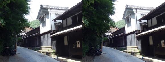 嵯峨鳥居本 重要伝統的建造物郡保存地区②(平行法)
