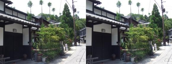 嵯峨鳥居本 重要伝統的建造物郡保存地区①(平行法)