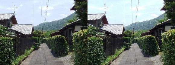 嵯峨小倉山(平行法)