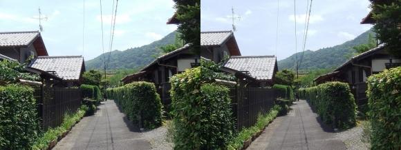 嵯峨小倉山(交差法)