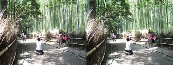 竹林の小径②(平行法)