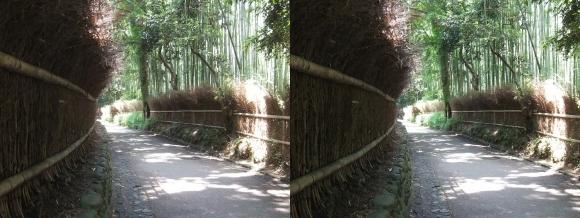 竹林の小径①(平行法)