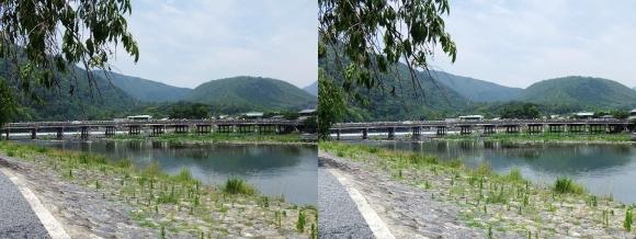 渡月橋①(平行法)