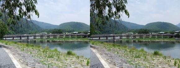渡月橋①(交差法)