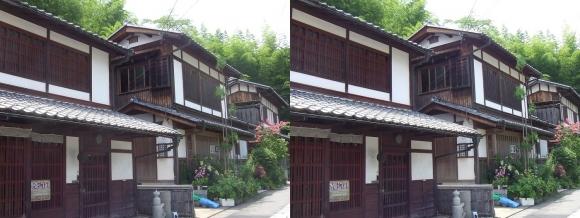 嵯峨鳥居本 重要伝統的建造物郡保存地区⑤(平行法)