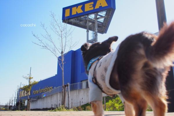 20140405_IKEA02.jpg