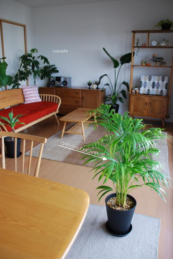 20140418_ IKEA グリーン01