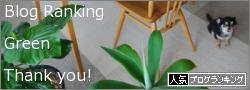 観葉植物 ブログランキングへ