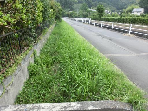 水路の草刈1