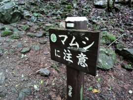 20140706_0917_26.jpg
