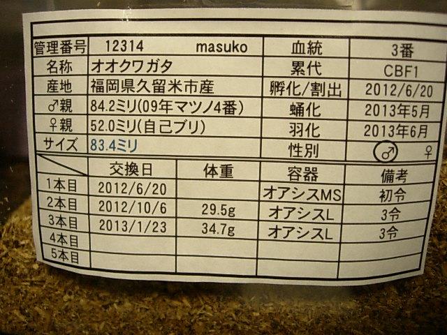 DSCN0411.jpg