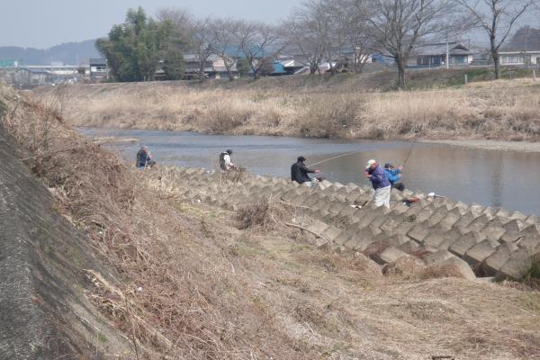 津保川の寒バエ釣り
