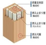 images (4)takenaka
