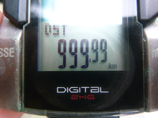 P1060510.jpg