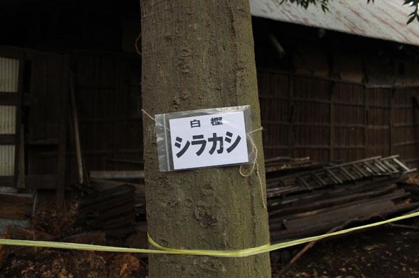 2014_3_30-11.jpg