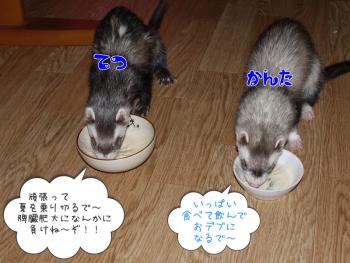 ブログ③(6)