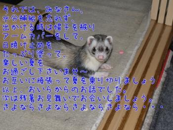 ブログ③(7)
