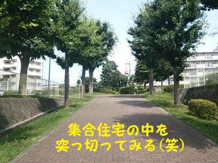20140828160014047.jpg