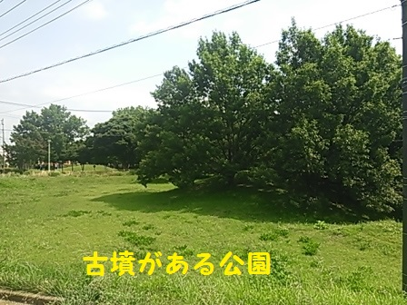 2014082816001548f.jpg