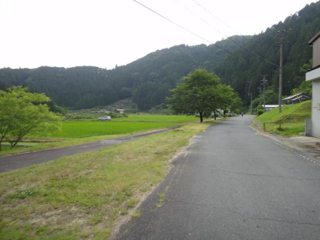 田んぼ沿い