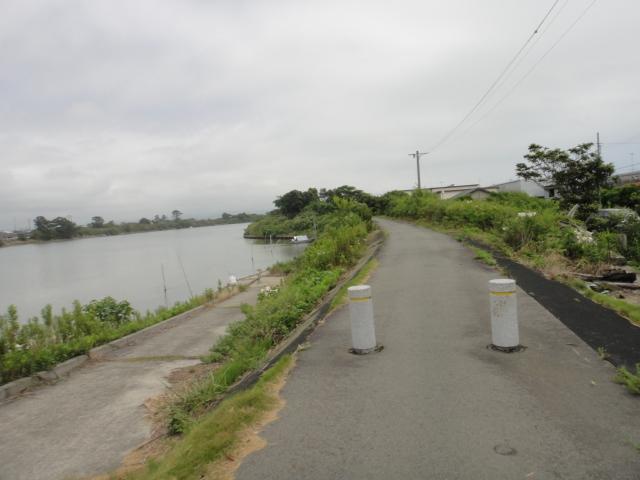 川堤防沿い