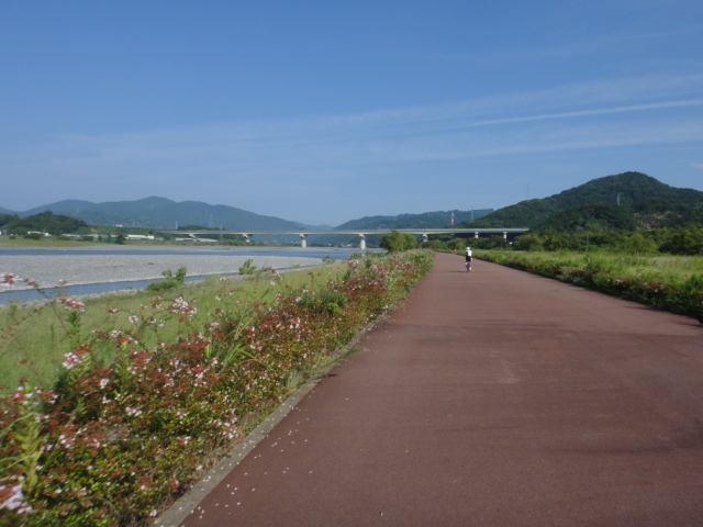 河川敷のサイクリングロード