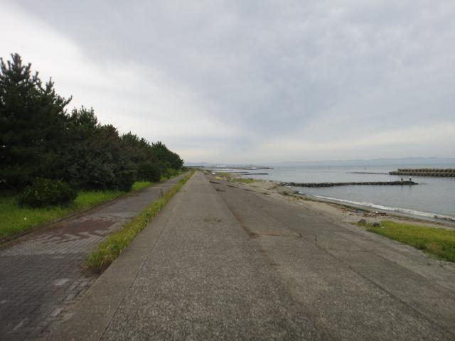 海岸線堤防道路