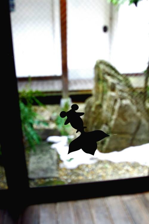 切り絵の金魚 ハイキ―