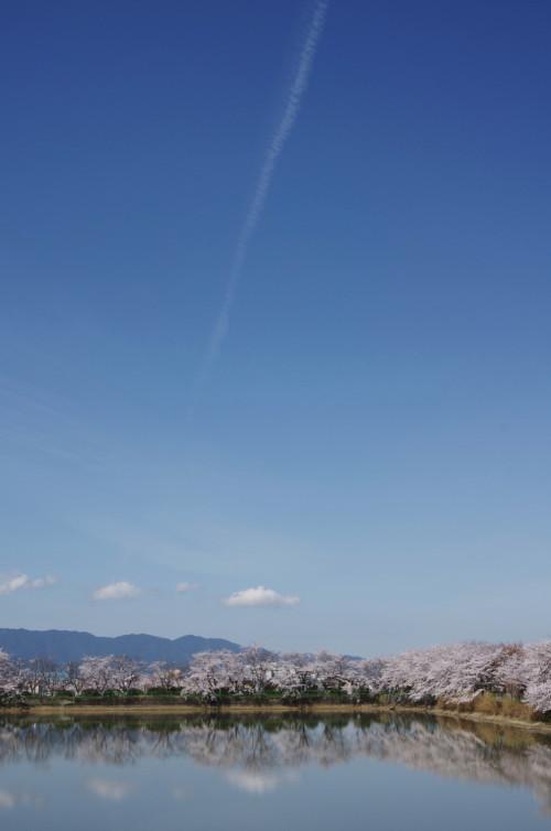 醍醐池 飛行機雲