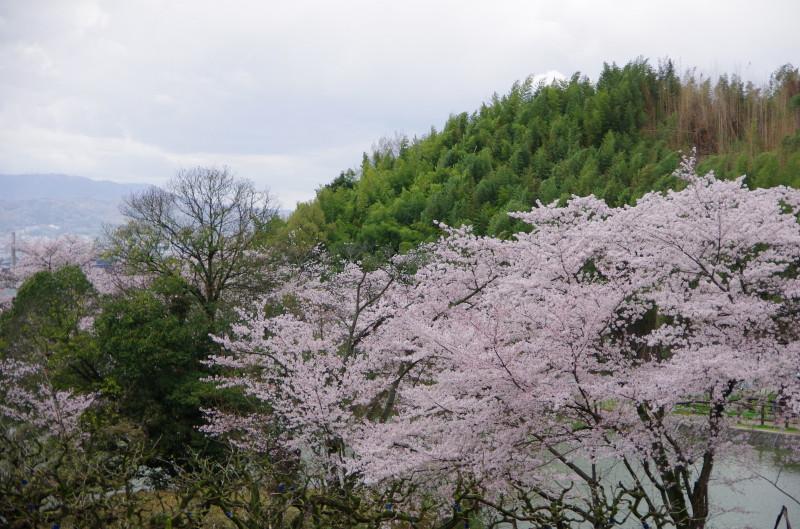 内山永久寺2
