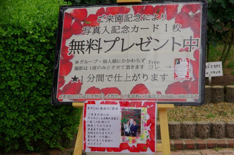 霊山寺 カード