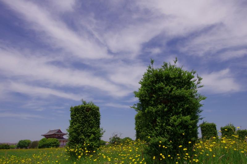 平城宮跡 大極殿と植栽