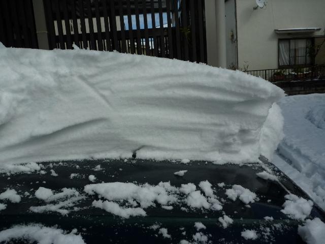20140209_snow_2.jpg