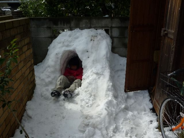 20140209_snow_7.jpg