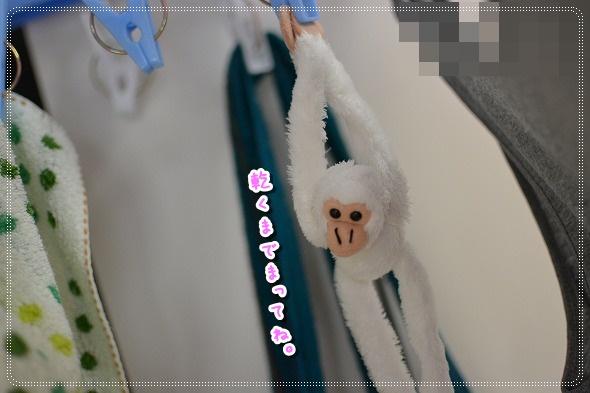 DSC_0090 (7)