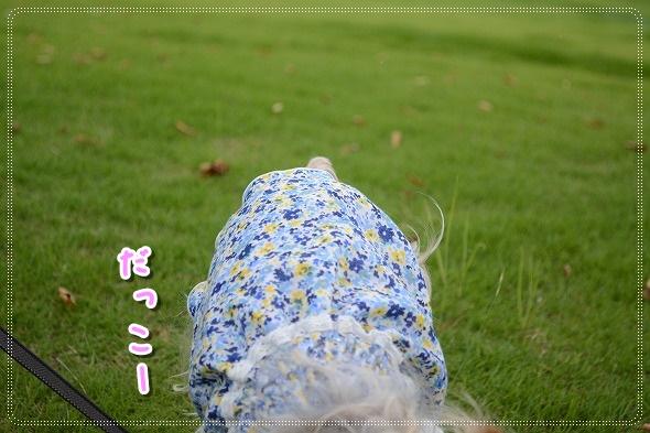 DSC_0059_20140721234031fad.jpg