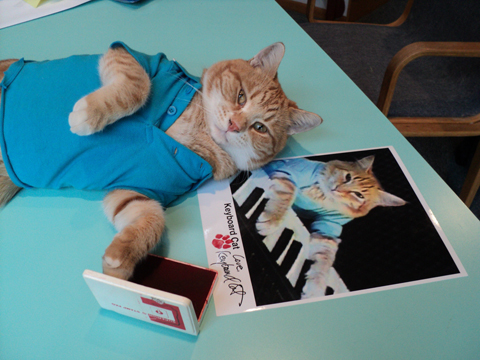 Keyboard-Cat-Autograph