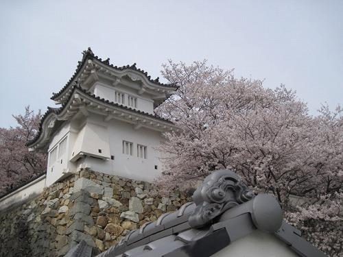 2014春☆播州龍野