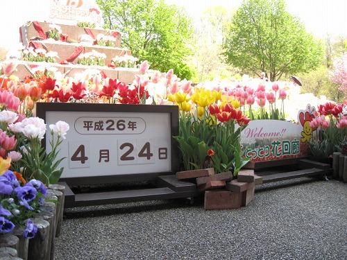 2014春☆鳥取花回廊