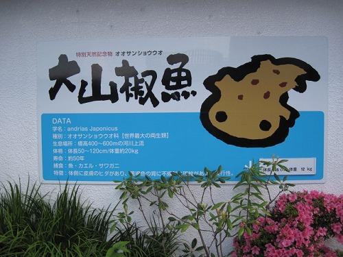 2014☆蒜山高原センター
