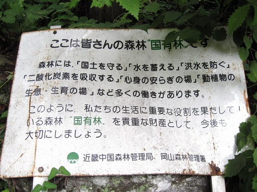岡山県苫田郡鏡野町上齋原中津河某所