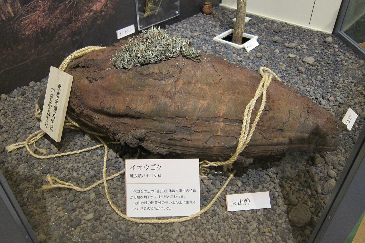 宮沢賢治は活火山である岩手山 ...