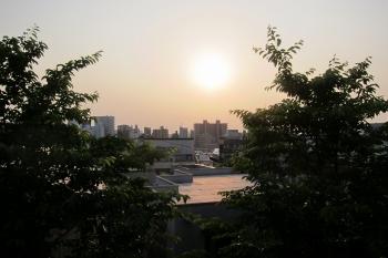 赤IMG_0821 - コピー
