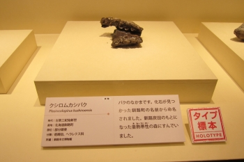 ホ2IMG_0329